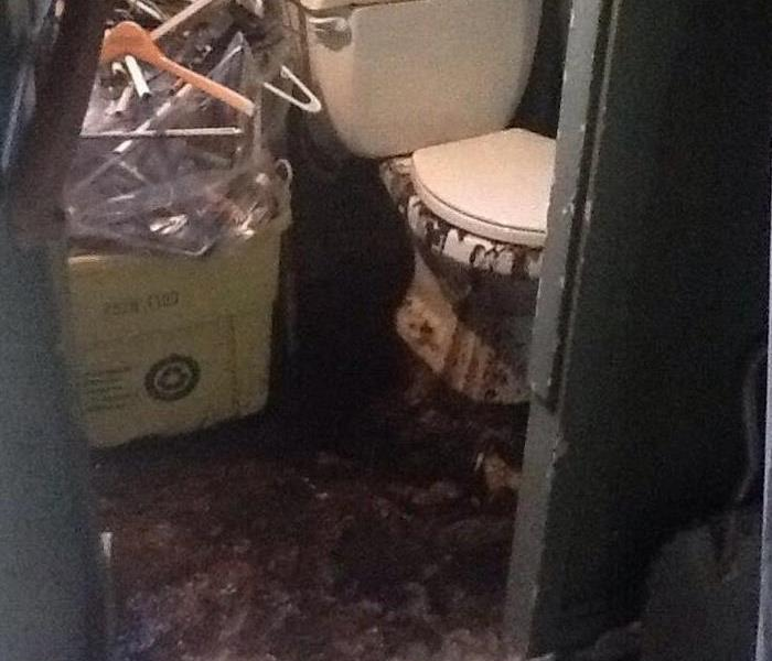 Sewage damage in Alexandria 22301 Before