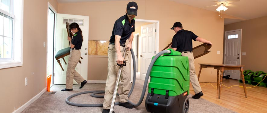 Mclean, VA cleaning services